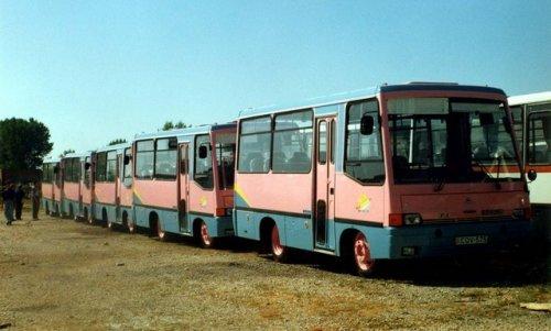 City busz