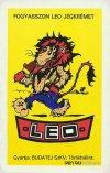 Leo jégkrém